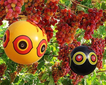 果园驱鸟气球