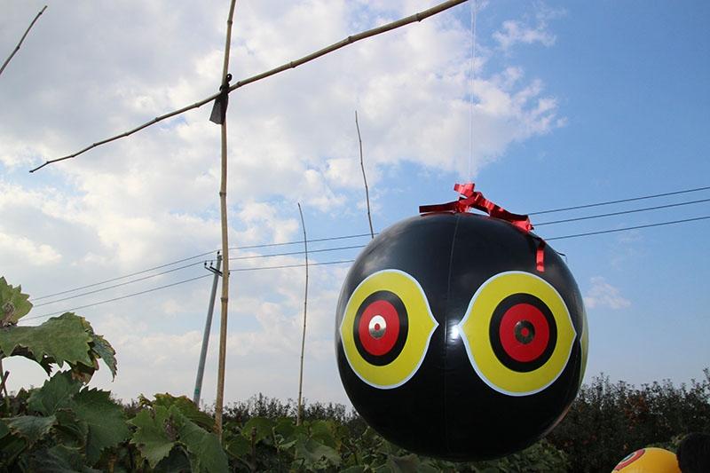 大眼驱鸟气球,驱鸟气球,厂家直销